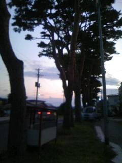 091019_1701~01.JPG